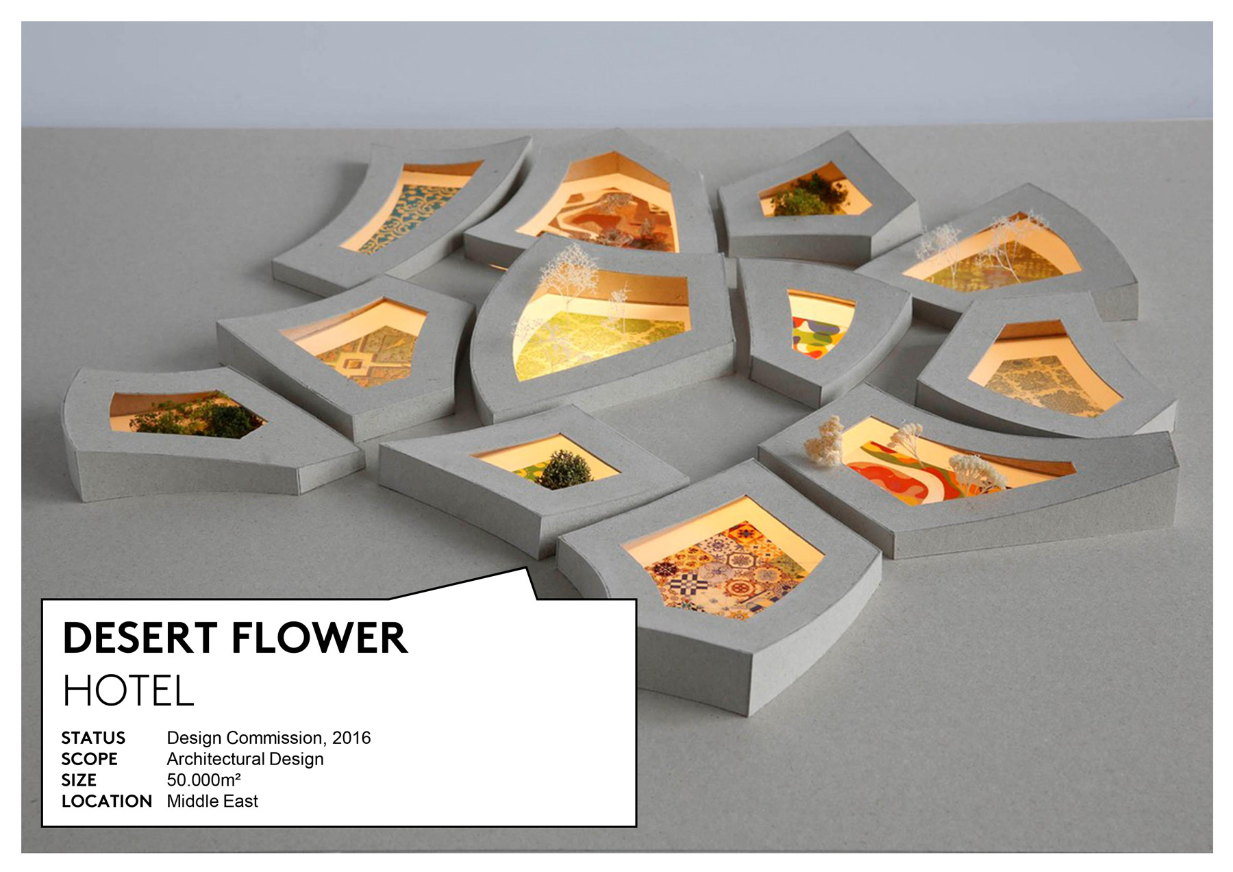 311_Desert_Flower_Slide_02